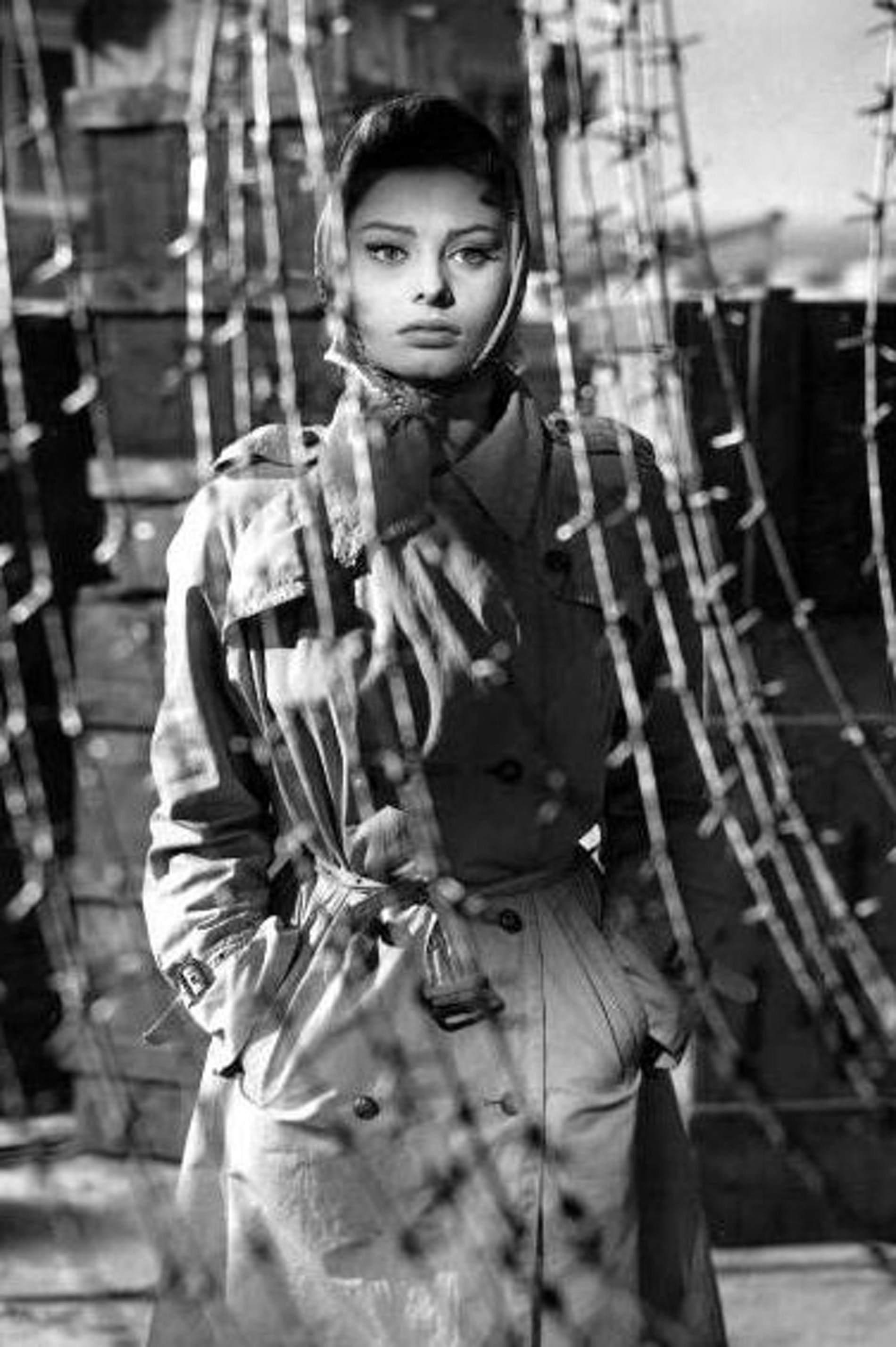 1554475693928105 sophia loren the key 1553616254