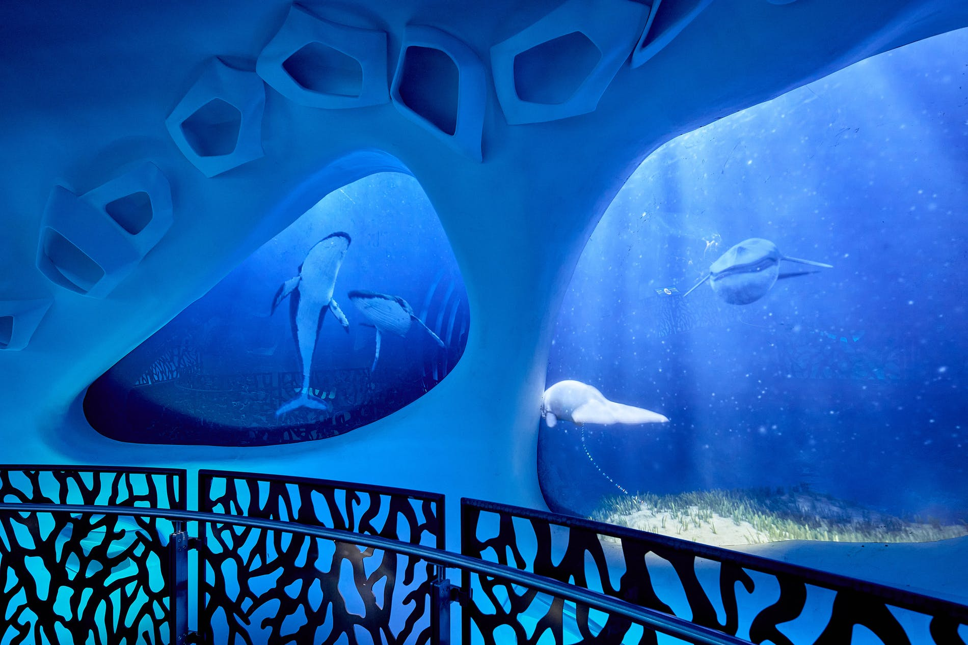 1631890551749675 expo sustainability pavilion under the ocean 2